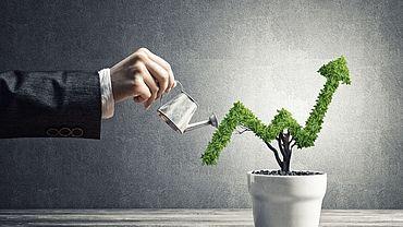 Sinnvoll investieren und Zukunft gestalten