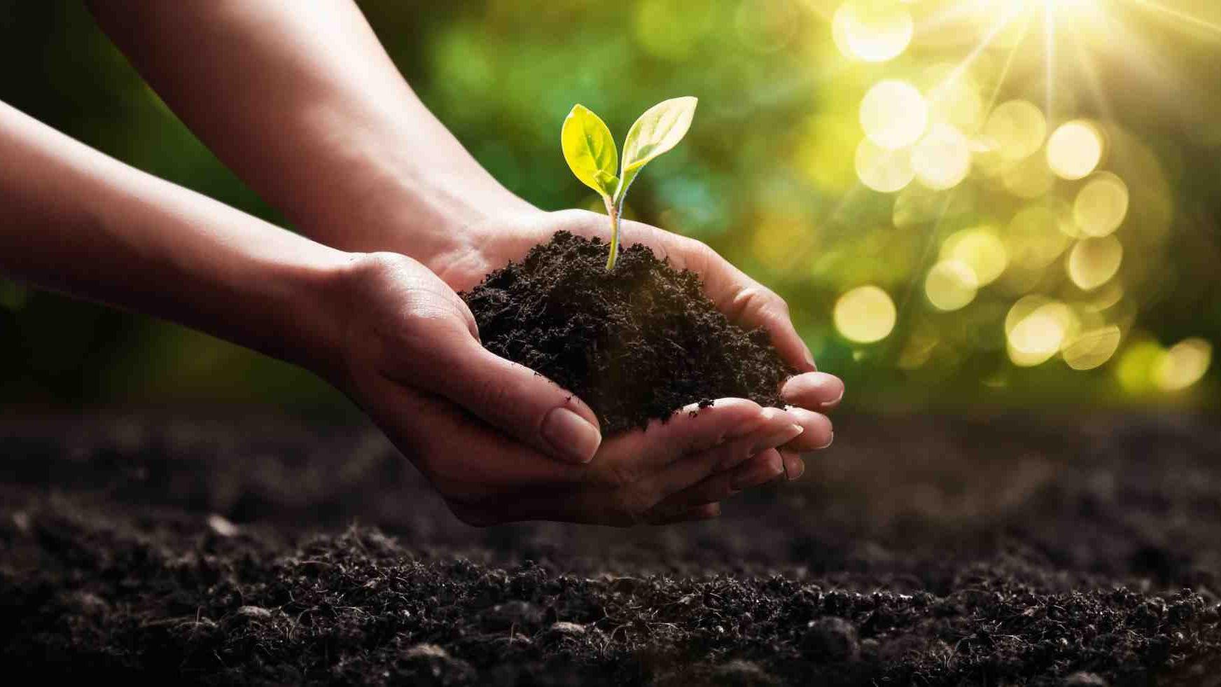 Nachhaltig Investieren in breite Titelauswahl