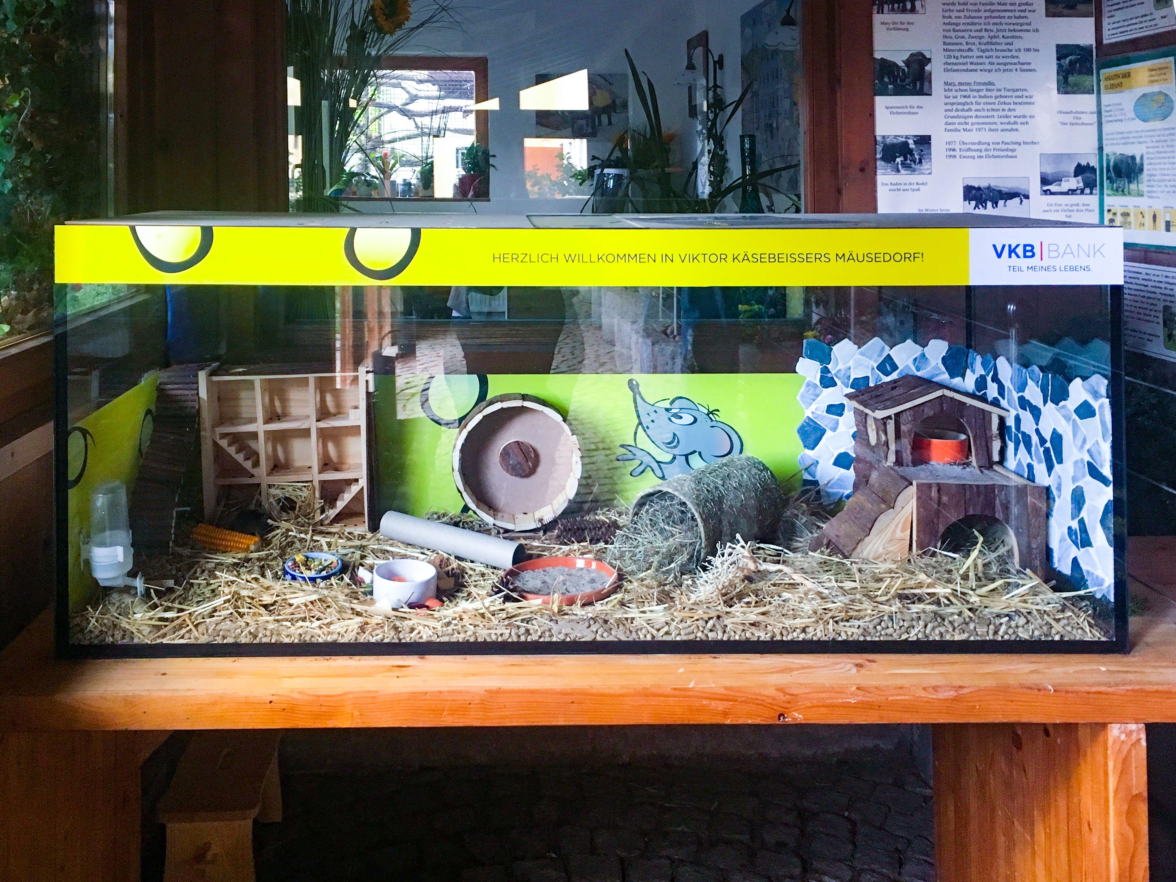 Viktor Käsebeißers Mäusedorf im Tiergarten Walding ist einen Besuch wert!