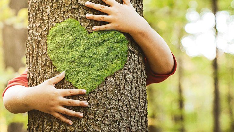 Unser Nachhaltigkeitsfonds